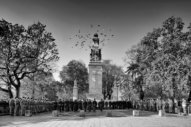 Southampton Cenotaph and Pigeons