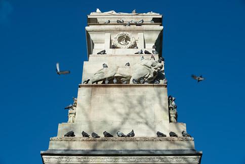 Pigeons on Southampton War Memorial