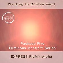 Wanting Express.jpg