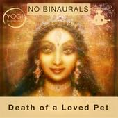 Death Pet NBW .jpg