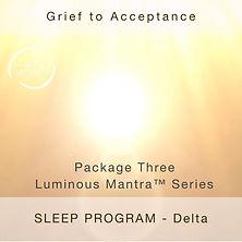 Grief Sleep.jpg