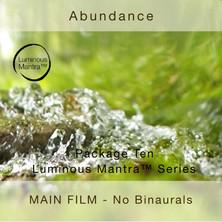 Abundance NBW.jpg