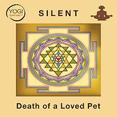 Death Pet Silent.jpg