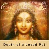 Death Pet.jpg
