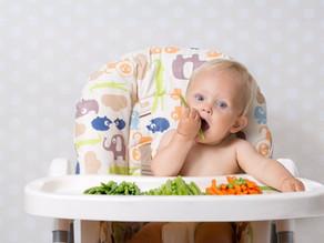 Alimentación Complementaria... ¿Cuándo comenzar?