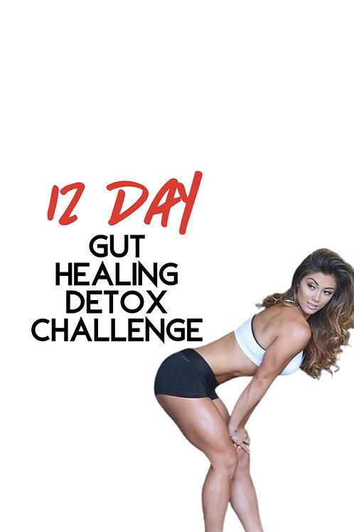 12 Day Gut Healing Detox