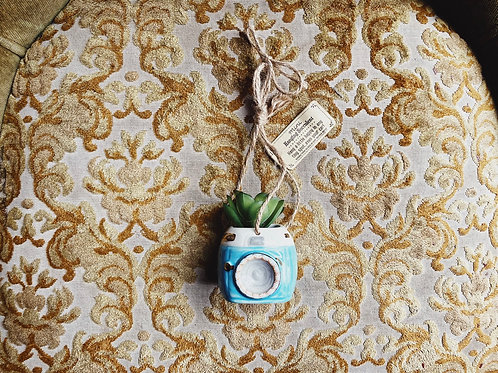 Hanging Succulent - Camera