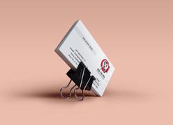taisinkan כרטיס ביקור ולוגו