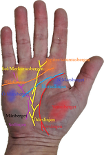 Höger_hand_linjer_o_berg_text.png