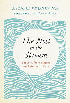 nest in the stream.jpg