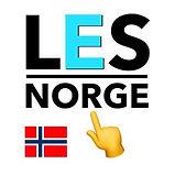 LES Norge AS.jpeg