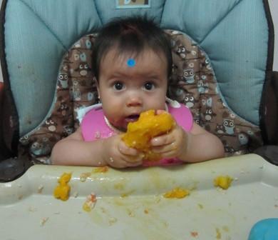 Introducción de Alimentos en el Bebé Amamantado...Actitud de los padres o cuidadores ante la nueva e