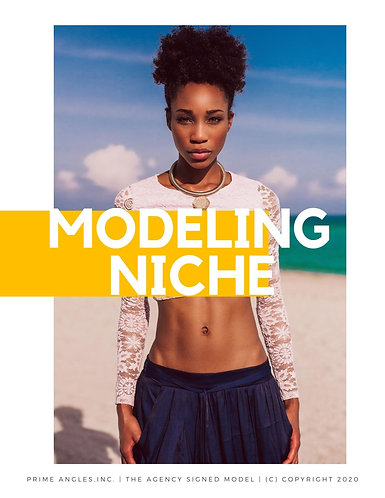 Discovering Your BEST Modeling Niche