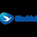 Logo Web - Bluebird 2.png