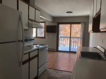 Woodridge Aparments white kitchen with view