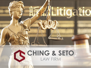 Litigation Seminar 訴訟講座系列