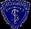 cropped-TSV-logo-7-removebg-preview.png
