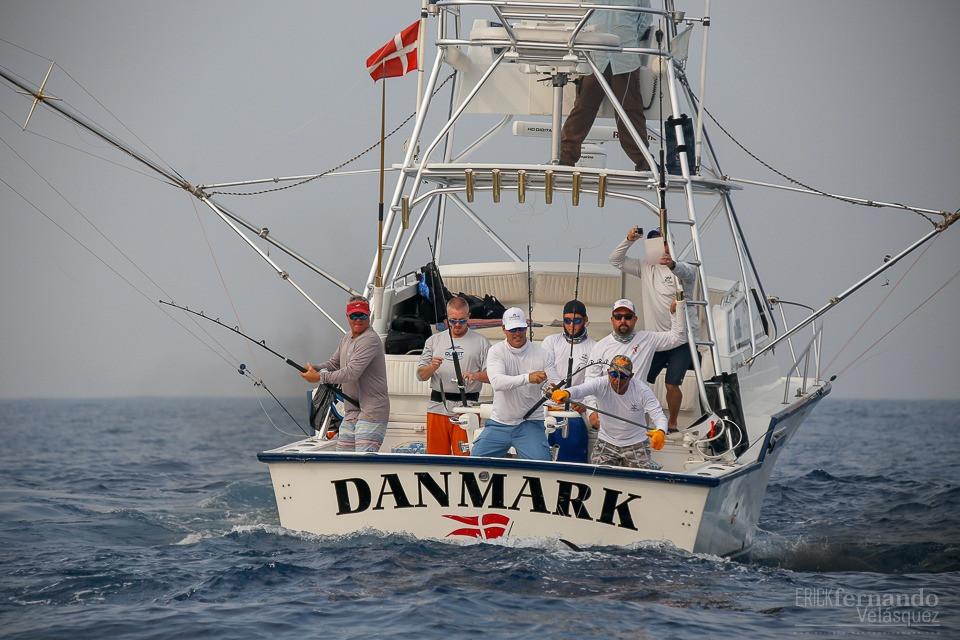 DANMARK 5