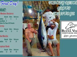220 Pounds Yellowfin Tuna