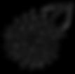 DSC_1343 clear w leaf.png