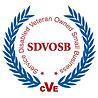 SDVOB Seal.jpg