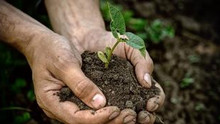 #WorldEnvironmentDay: Are South Africans Living Eco-friendly Enough?
