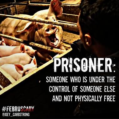 Prisoner - sow .png