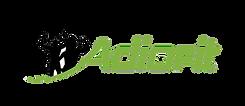 Adiofit logo transparent (1).png