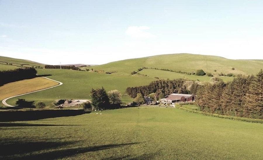 Helen farm pic.jpg
