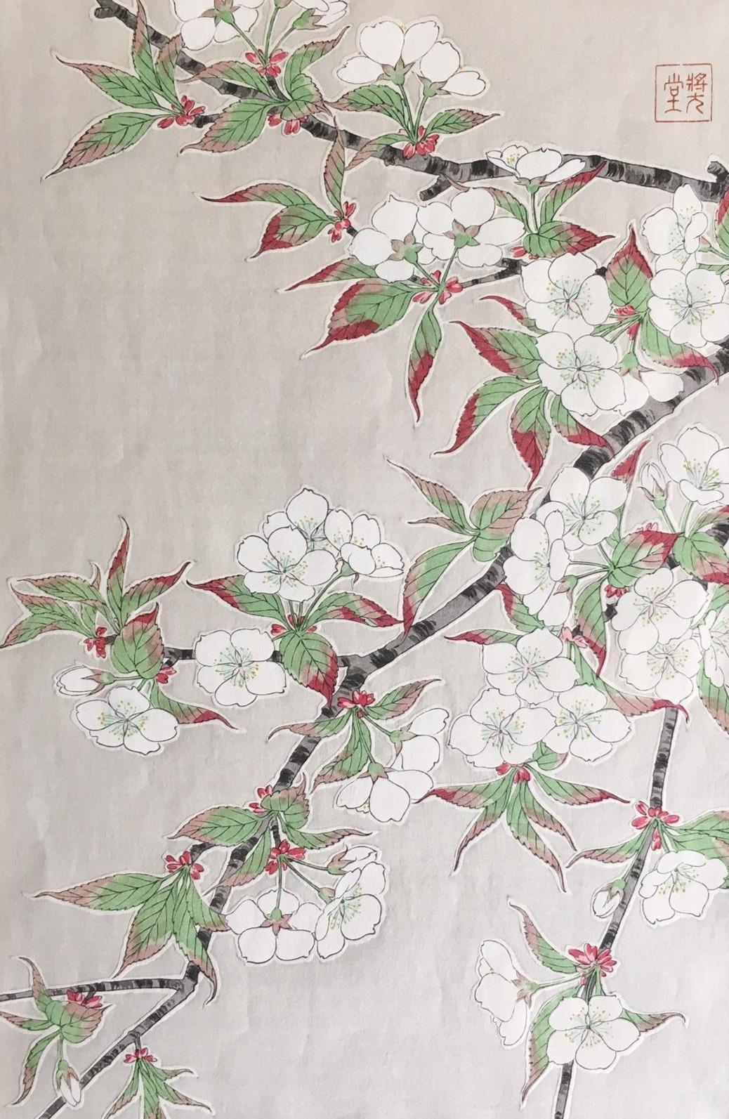 #3066 Wild Cherry