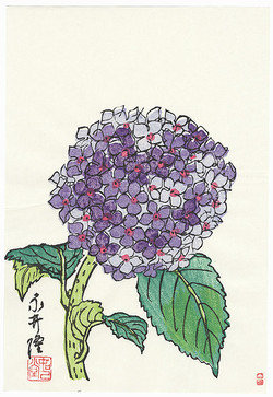 #3076 SOLD Hydrangea