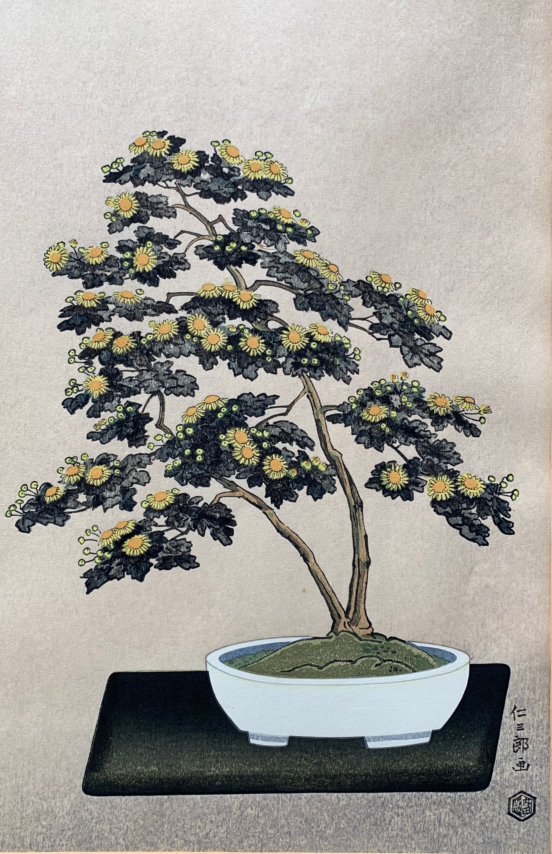 #4026 Potted Chrysanthemum