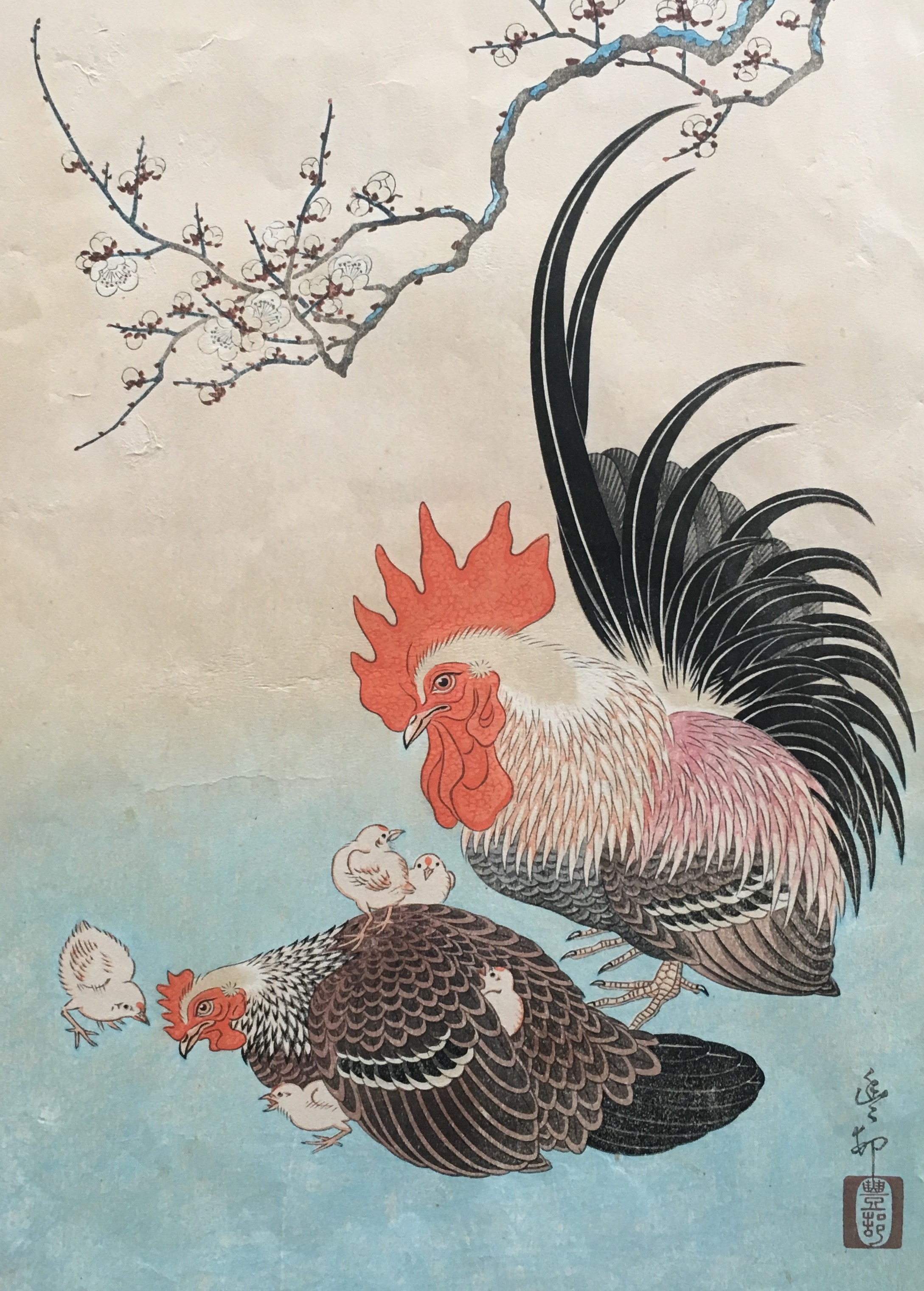#3069 Rooster and family