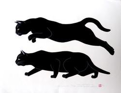 #3081 SOLD Cat (aim) 2