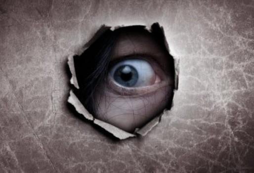The eye through the toilet wall.