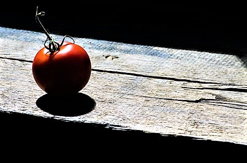 Tomato Power Balls