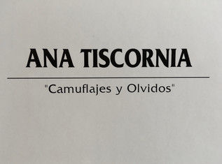"""Ana Tiscornia-""""camouflage and forgetting"""""""