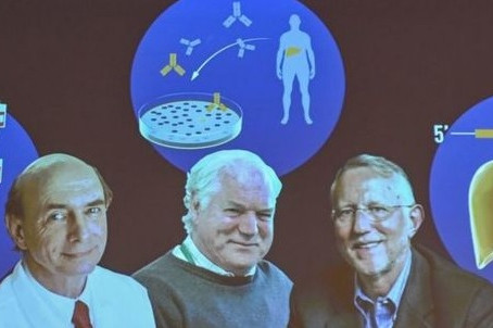 Discoverers of Hepatitis C finally honored with Nobel Prize