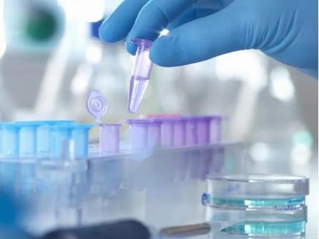 How coronavirus has impacted medical research
