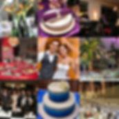 ESE Collage 1.jpg
