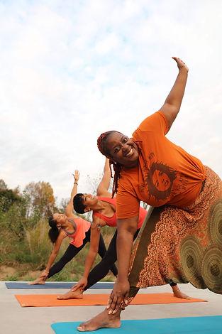 Soul Wellness triangle pose.jpeg