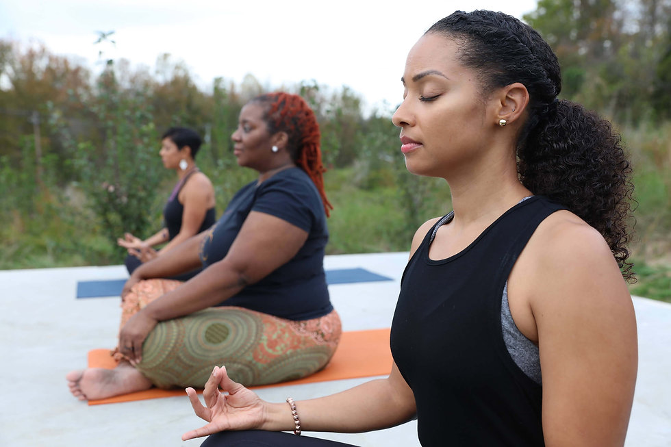 Soul Wellness yoga meditation.jpeg