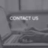 NEW COLOR_CONTACT US.png