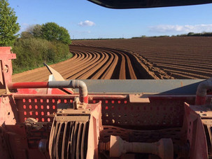 Soil prep perfection