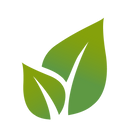 kisspng-leaf-royalty-free-environmental-