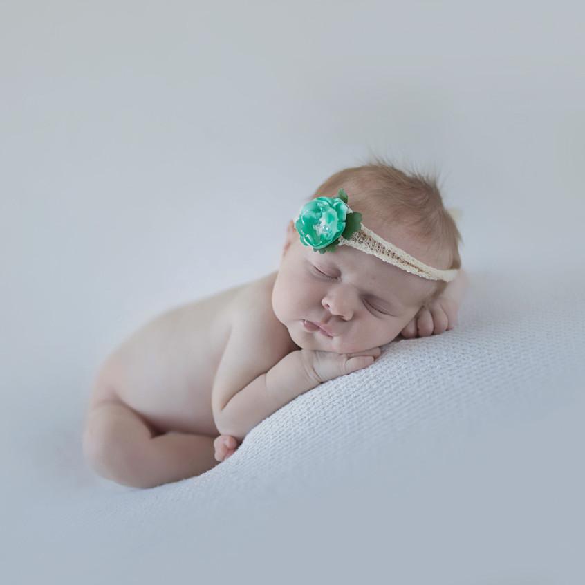newborn baby posed