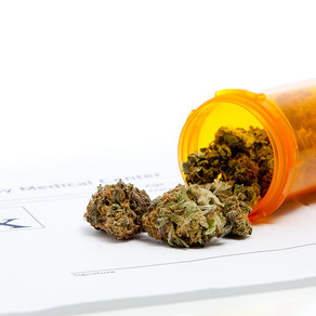 Medical Marijuana: Certified to Recommend