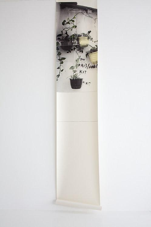 Hanging Baskets - Wallpaper