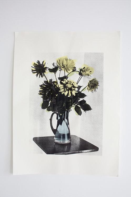 Brightly Colour Dahlias - Print