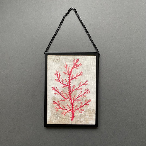 Small framed free-motion machine-embroidered seaweed picture